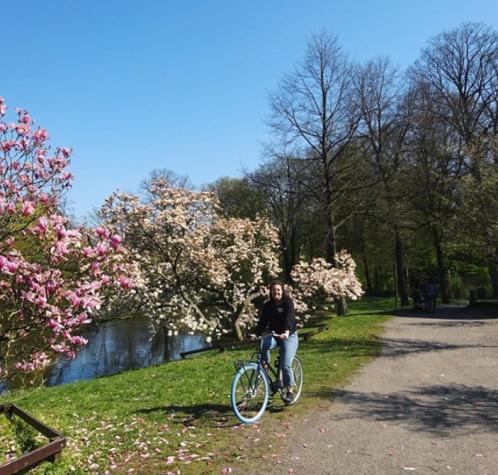 Biking in Bremen, Germany